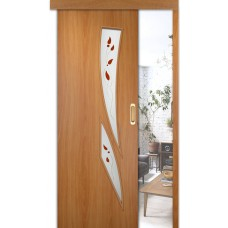 Раздвижные двери одинарные Стрелец